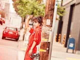 杨紫时尚唯美短发图片
