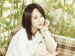 杨紫清新时尚写真图片