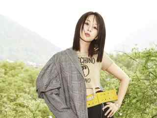 杨紫时尚杂志魅力写真图片