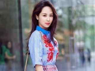 杨紫清新时尚街拍高清壁纸