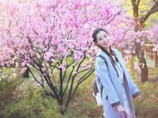 祝绪丹唯美花林漫步养眼壁纸图片