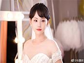 延禧攻略顺嫔扮演者张嘉倪性感婚纱写真图片