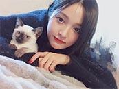 吴宣仪怀中抱猫可爱高清壁纸图片