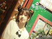 賴美雲(yun)愛情經緯線封(feng)面照(zhao)唯美高清壁紙圖片