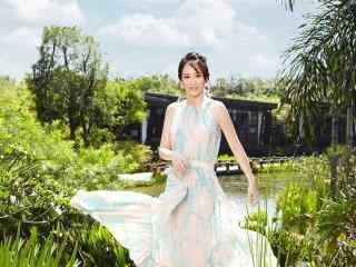 人气女星陈乔恩时尚写真高清壁纸