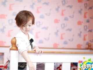 软萌可爱的宝贝jackson桌面壁纸