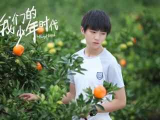 我们的少年时代王俊凯摘橘子剧照壁纸