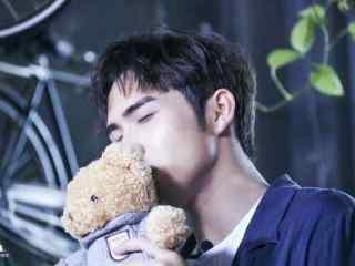 张彬彬亲吻可爱小熊图片壁纸