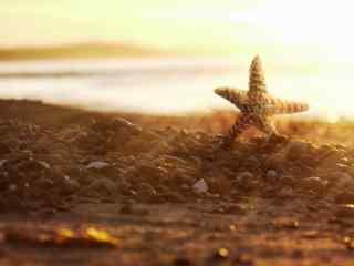 阳光照耀下沙滩海