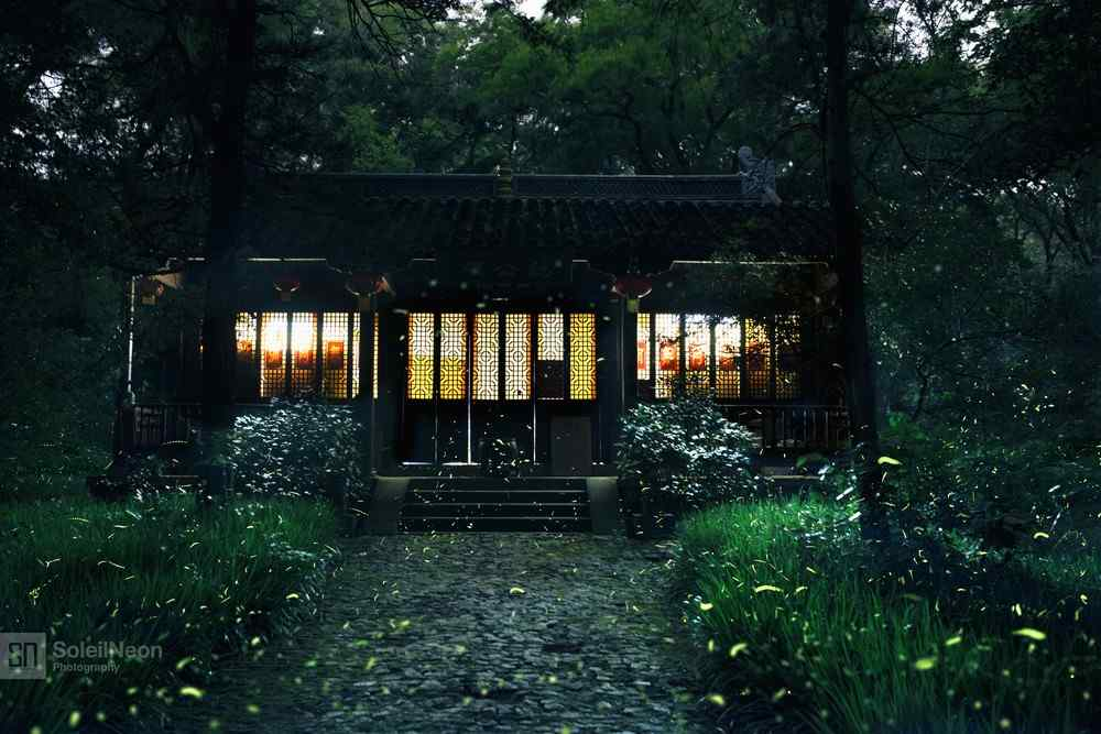 萤火虫和禅房桌面壁纸