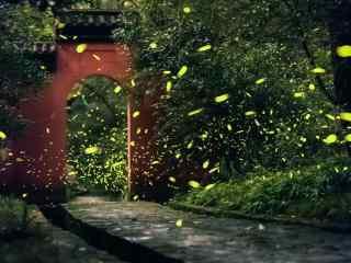 萤火虫和红色拱门桌面壁纸