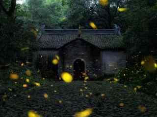 萤火虫和老房子桌面壁纸