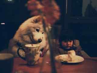 狗狗与小主人可爱