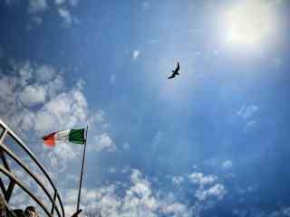 意大利上空翱翔的老鹰图片