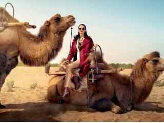 欧美美女骆驼写真图片壁纸