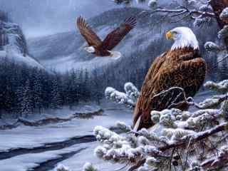 雪山森林里的老鹰