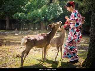 奈良鹿—和美女在树林玩耍桌面壁纸