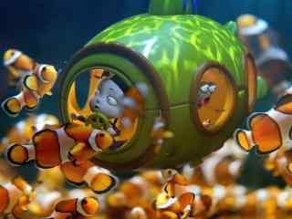 僵小鱼与可爱的小丑鱼群桌面壁纸
