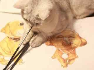 认真作画的英短猫咪桌面壁纸