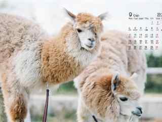 2017年9月日历羊
