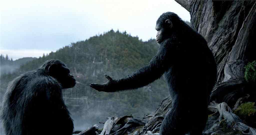 电影猩球崛起2凯撒剧照图片