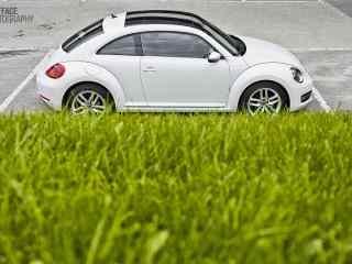 小清新大众甲壳虫系列汽车壁纸