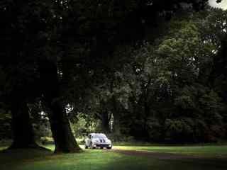 在森林中行驶的大