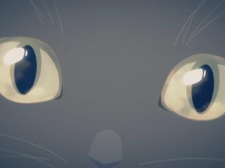 《她和她的猫》猫咪的眼睛桌面壁纸