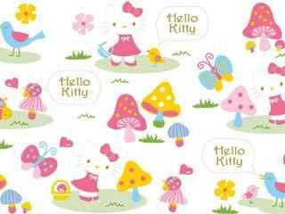 粉嫩kitty猫超可爱萌物高清图片桌面壁纸