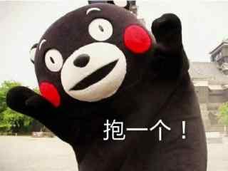 可爱熊本熊表情包