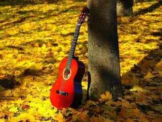 唯美树林里的吉他