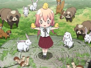 雏子的笔记之可爱雏子与小动物们