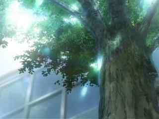 人渣的本愿动漫场景之校园里的大树