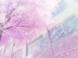 人渣的本愿动漫意境场景之唯美樱花