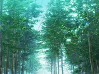 人渣的本愿动漫意境场景之清新森林
