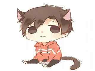 全职高手可爱的猫咪叶修头像