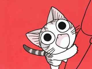 甜甜私房猫呆萌的小起桌面壁纸