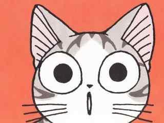 甜甜私房猫一脸呆萌的小起桌面壁纸