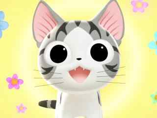 甜甜私房猫软萌可爱的小起桌面壁纸