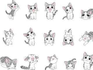 甜甜私房猫满满的小起桌面壁纸