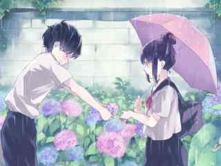 女生,男生,雨伞,鲜花,初恋动漫壁纸