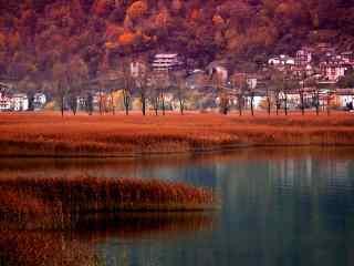深秋下的枫叶小镇高清壁纸