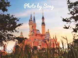 迪士尼乐园城堡唯