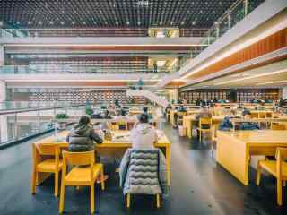安静的图书馆高清桌面壁纸