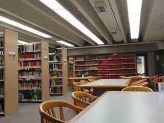 宁静的图书馆桌面壁纸