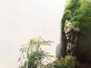 苏州博物馆风景图片壁纸