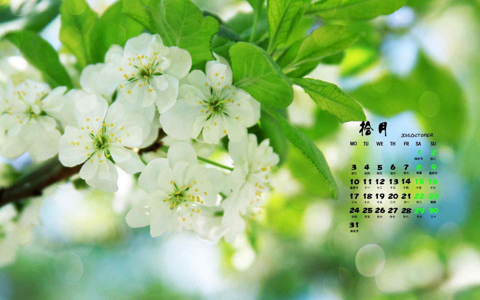 2016年10月日历绿色护眼花卉桌面壁纸