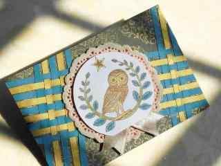 可爱猫头鹰图案手工贺卡图片