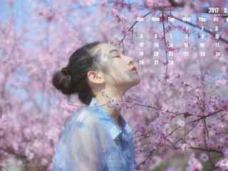 2017年2月日历壁纸之唯美樱花树下的美