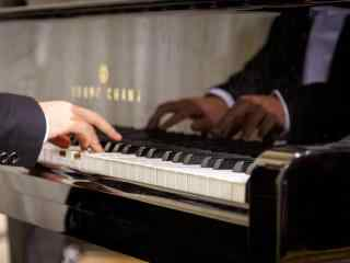 深情演绎的钢琴家图片桌面壁纸